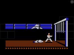 Karateka Classic shot 7