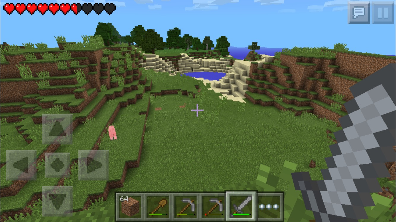 minecraft1before